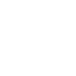 Wonder Real Estate Logo x2